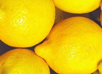 vcf-lemons