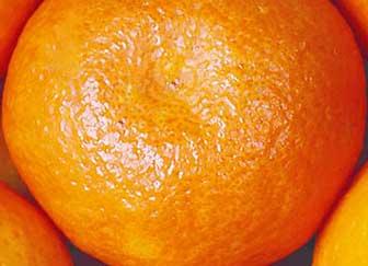vcf-mandarins